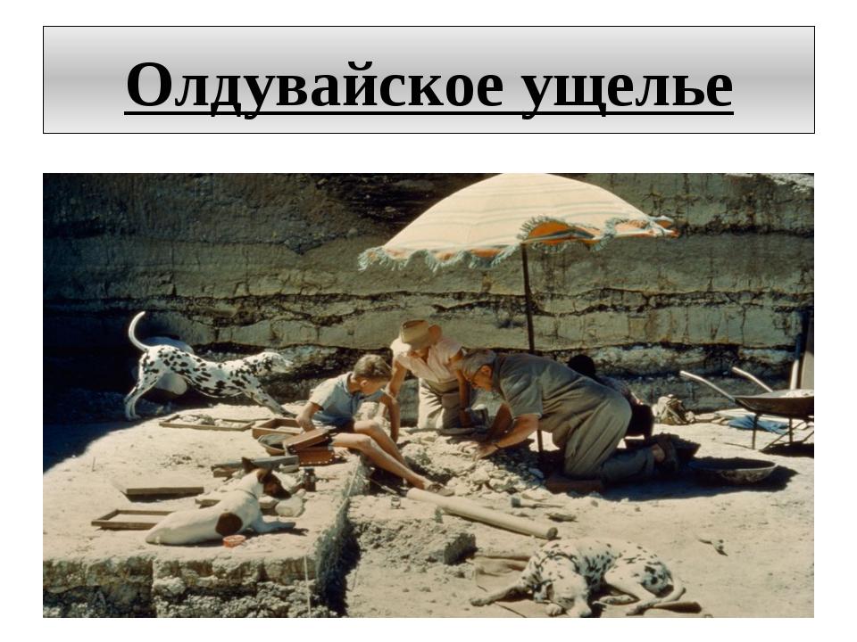 Олдувайское ущелье