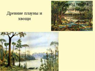 Древние плауны и хвощи