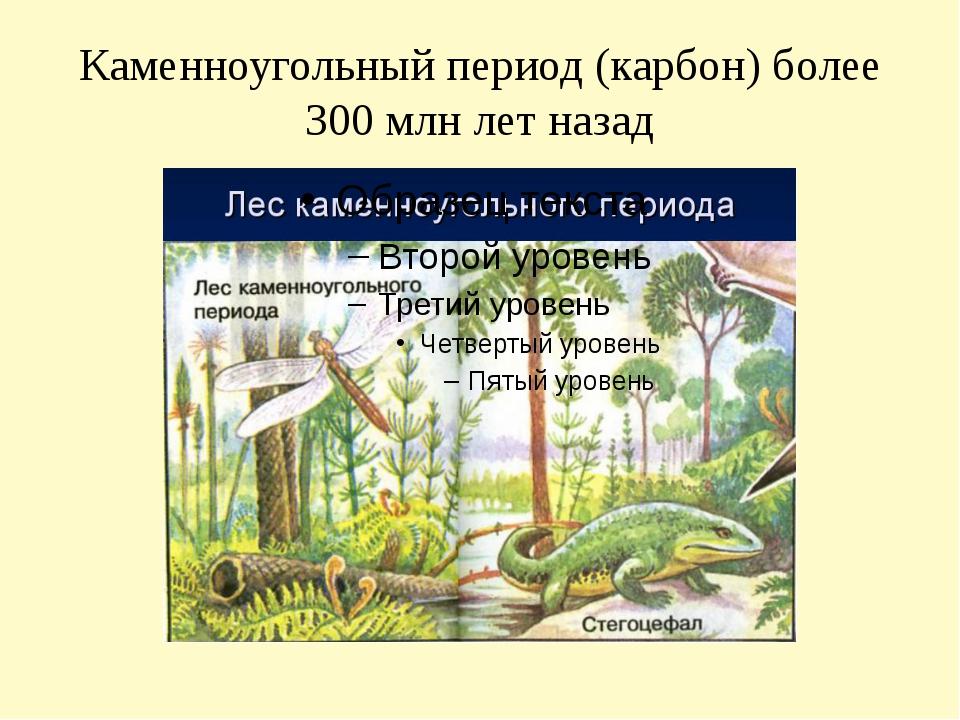 Каменноугольный период (карбон) более 300 млн лет назад
