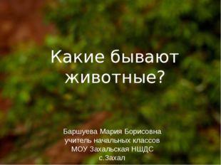 Какие бывают животные? Баршуева Мария Борисовна учитель начальных классов МО