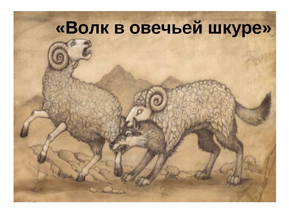 «Волк в овечьей шкуре»
