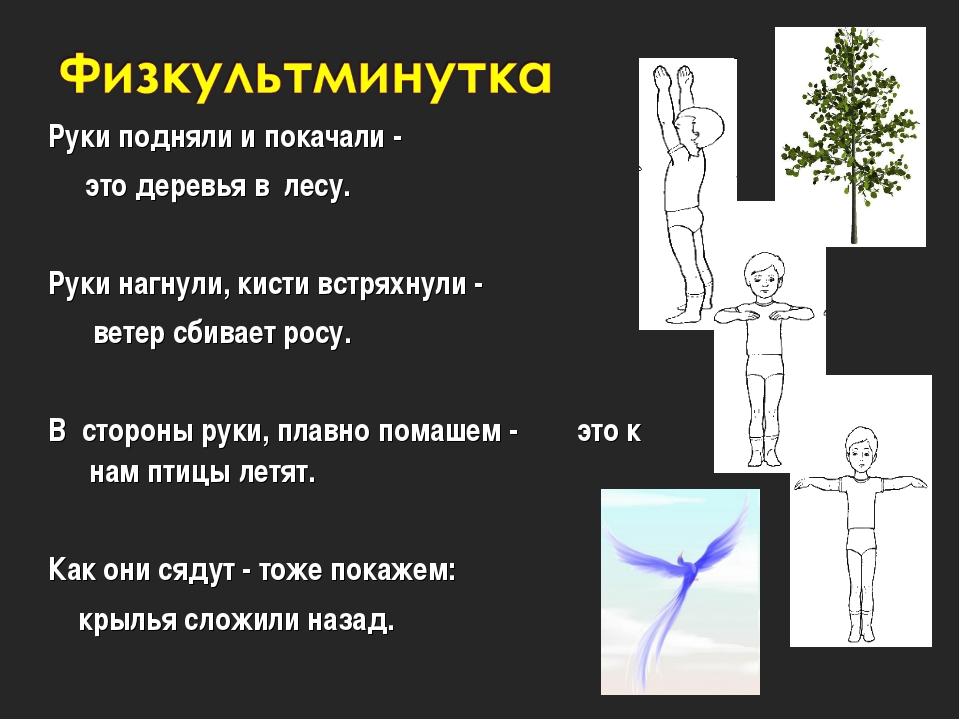 Руки подняли и покачали - это деревья в лесу. Руки нагнули, кисти встряхнули...
