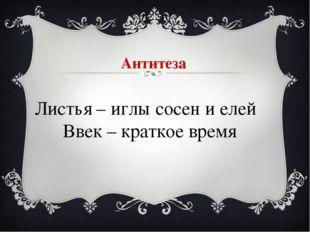 Антитеза Листья – иглы сосен и елей Ввек – краткое время