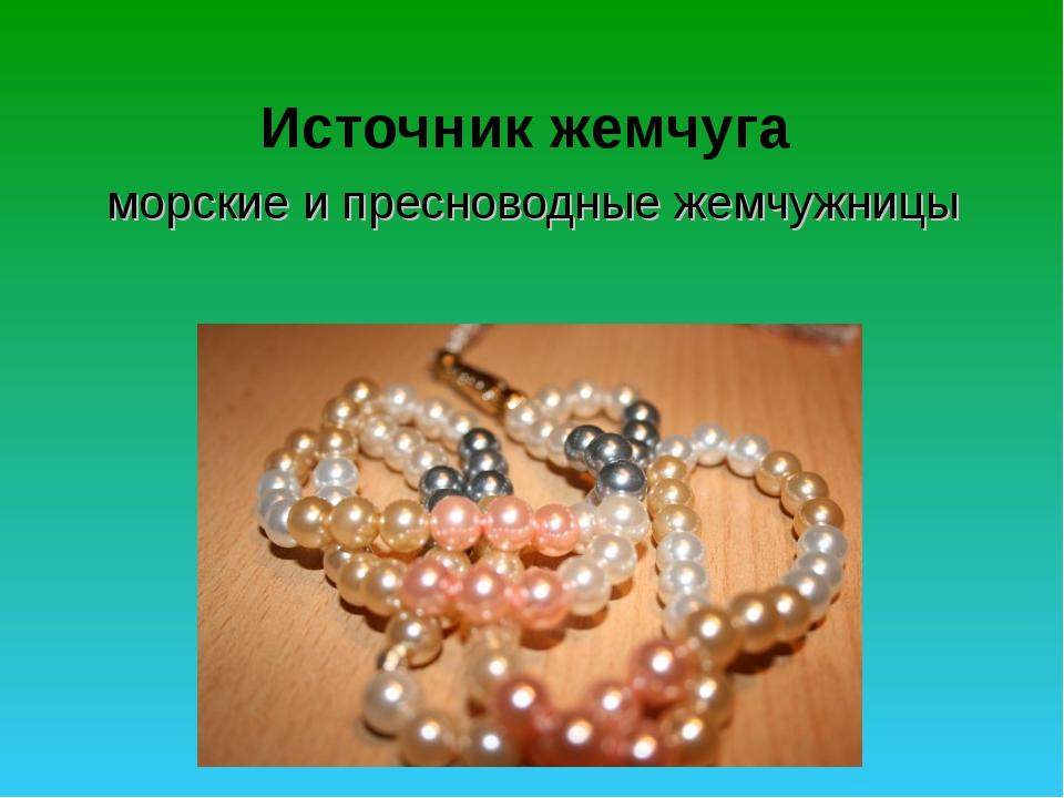 Источник жемчуга морские и пресноводные жемчужницы