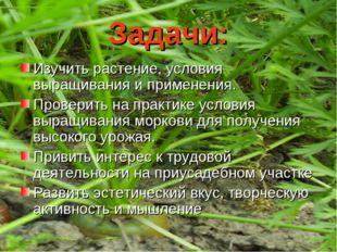 Задачи: Изучить растение, условия выращивания и применения. Проверить на прак