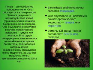 Почва – это особенное природное тело. Оно образуется на поверхности Земли в р