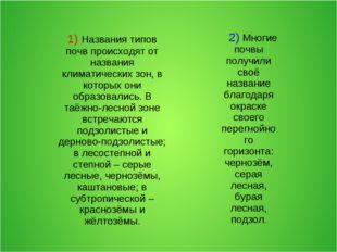 2) Многие почвы получили своё название благодаря окраске своего перегнойного