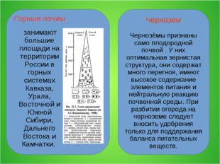 Чернозем Чернозёмы признаны само плодородной почвой . У них оптимальная зерни