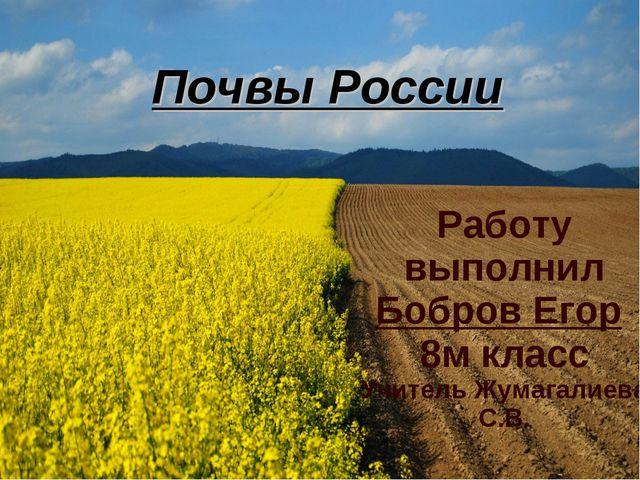 Работу выполнил Бобров Егор 8м класс Учитель Жумагалиева С.В. Почвы России