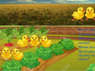 Все ли здесь цыплята-детки, Надо сосчитать наседке! Шесть на грядках, Три во