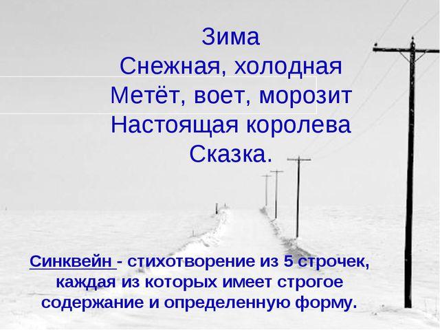 Зима Снежная, холодная Метёт, воет, морозит Настоящая королева Сказка. Синкве...