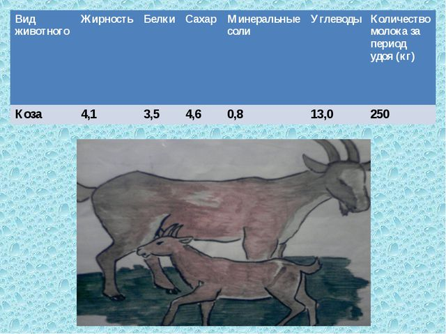 Вид животногоЖирностьБелкиСахарМинеральные солиУглеводыКоличество молок...