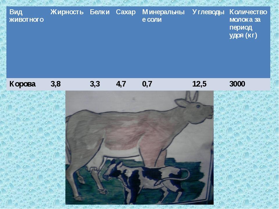 Вид животного Жирность Белки Сахар Минеральные соли Углеводы Количество...