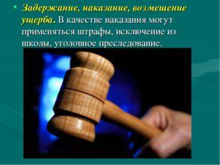 Задержание, наказание, возмещение ущерба. В качестве наказания могут применят