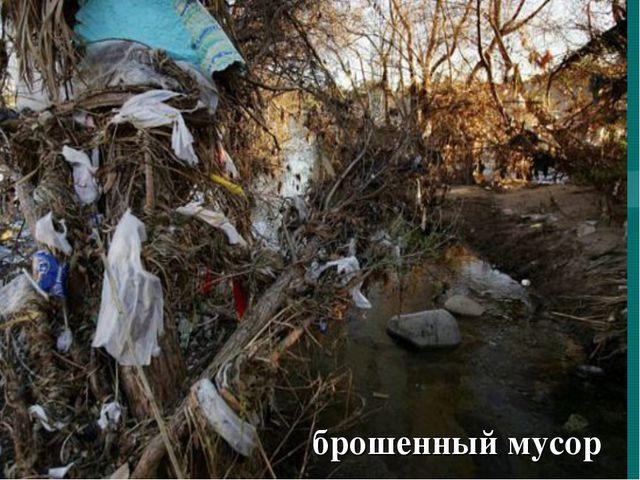 брошенный мусор