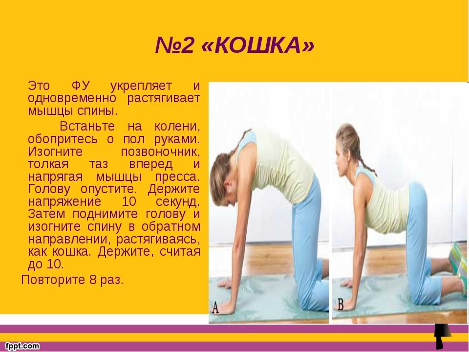 №2 «КОШКА» Это ФУ укрепляет и одновременно растягивает мышцы спины. Встаньте...
