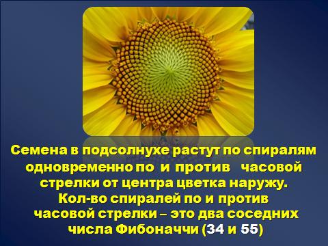 hello_html_6a7e77c1.png