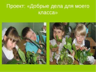 Проект: «Добрые дела для моего класса»