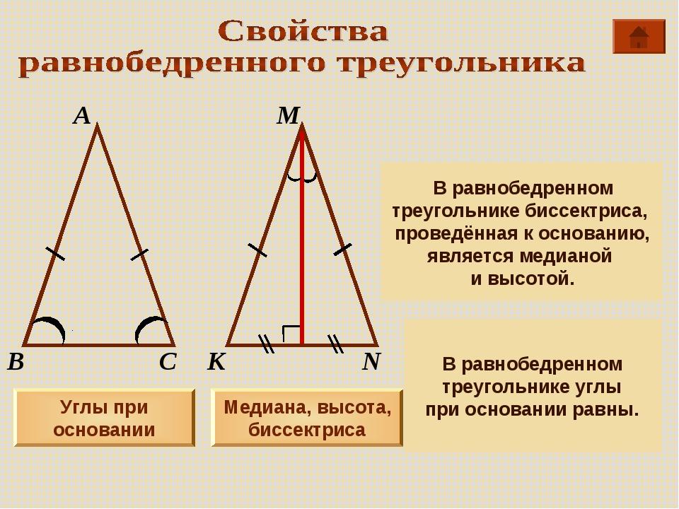 А М В К С N Углы при основании Медиана, высота, биссектриса В равнобедренном...