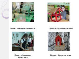 Проект « Кормушка для птиц» Проект « Кормушка для птиц» Проект «Невидимки вок