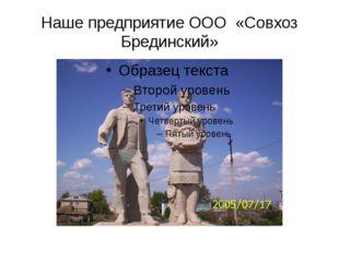 Наше предприятие ООО «Совхоз Брединский»