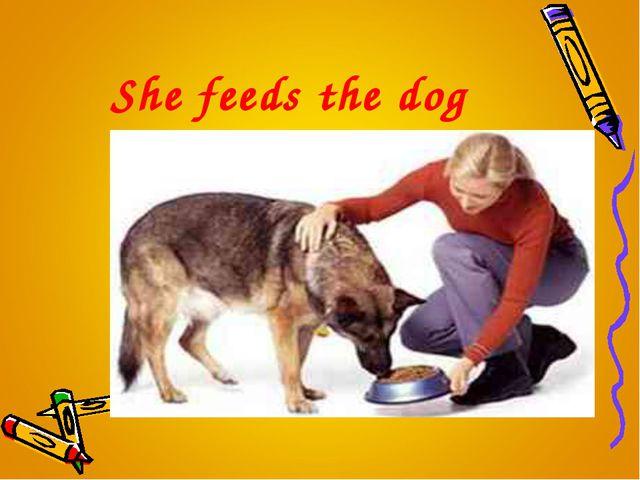 She feeds the dog