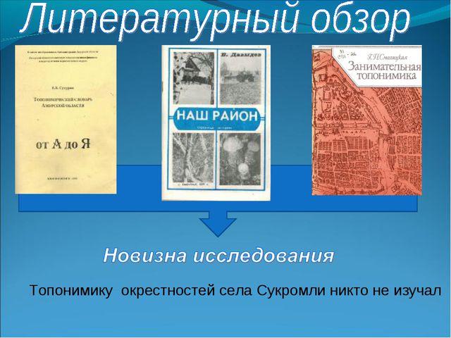 Топонимику окрестностей села Сукромли никто не изучал