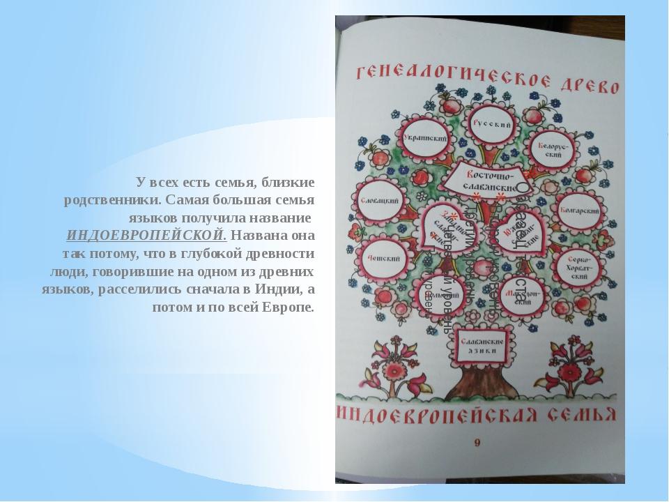 У всех есть семья, близкие родственники. Самая большая семья языков получила...