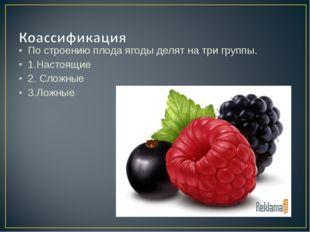 По строению плода ягоды делят на три группы. 1.Настоящие 2. Сложные 3.Ложные