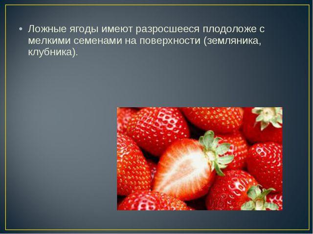 Ложные ягоды имеют разросшееся плодоложе с мелкими семенами на поверхности (з...