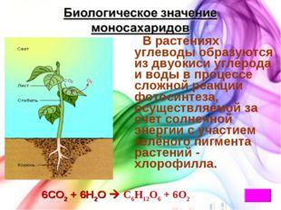 * В растениях углеводы образуются из двуокиси углерода и воды в процессе слож
