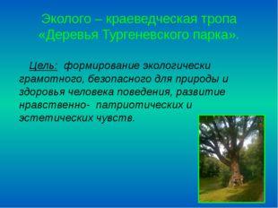 Эколого – краеведческая тропа «Деревья Тургеневского парка». Цель: формирован