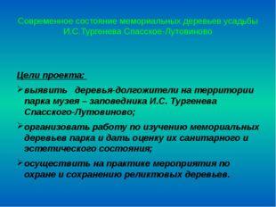 Современное состояние мемориальных деревьев усадьбы И.С.Тургенева Спасское-Лу