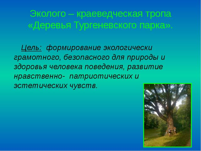 Эколого – краеведческая тропа «Деревья Тургеневского парка». Цель: формирован...