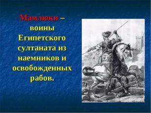 Мамлюки – воины Египетского султаната из наемников и освобожденных рабов.