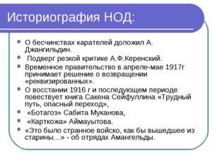 Историография НОД: О бесчинствах карателей доложил А. Джангильдин. Подверг ре