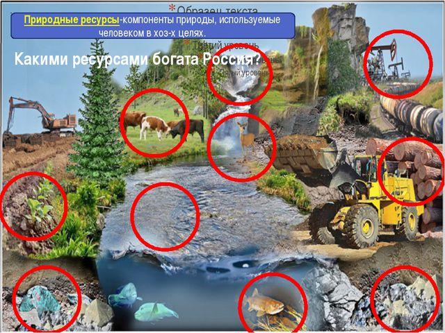 Какими ресурсами богата Россия? Что такое природные ресурсы? Природные ресур...