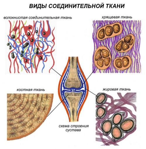 http://liubovkhapova.ru/wp-content/uploads/2015/06/soedinitelnaya_tkan.jpg
