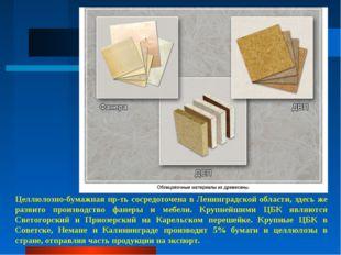 Целлюлозно-бумажная пр-ть сосредоточена в Ленинградской области, здесь же раз