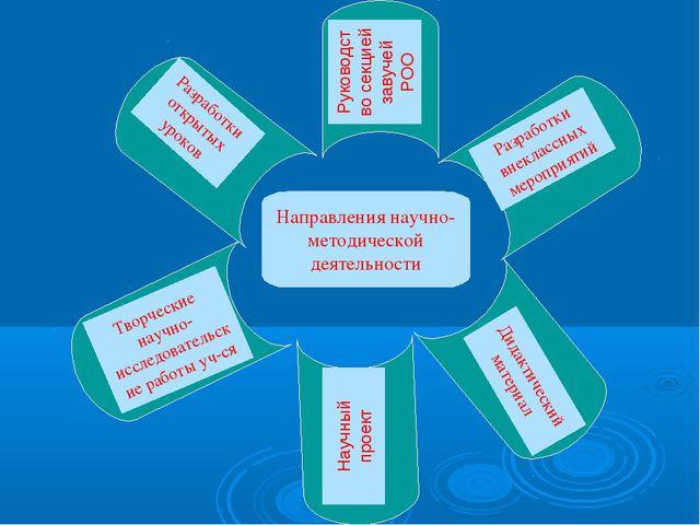Направления научно-методической деятельности Руководство секцией завучей РОО...