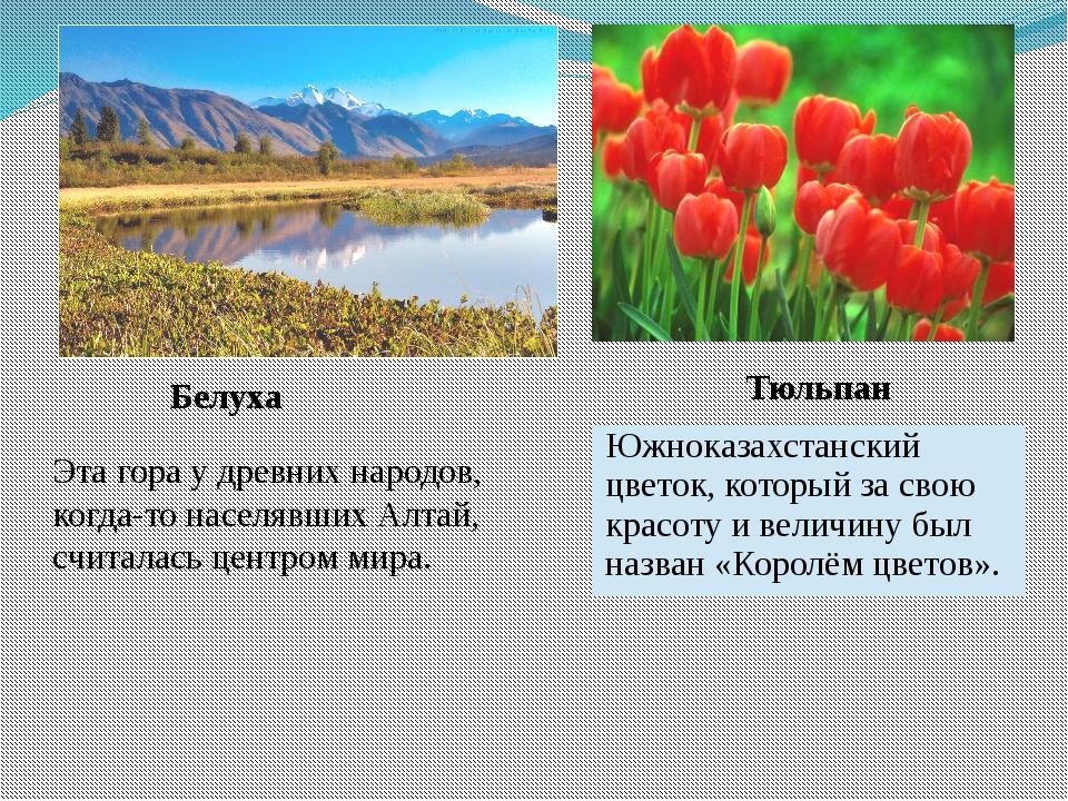 Белуха Эта гора у древних народов, когда-то населявших Алтай, считалась центр...