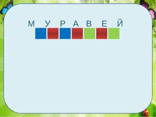 М У Р А В Е Й
