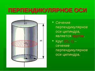 ПЕРПЕНДИКУЛЯРНОЕ ОСИ Сечение перпендикулярное оси цилиндра, является кругом.
