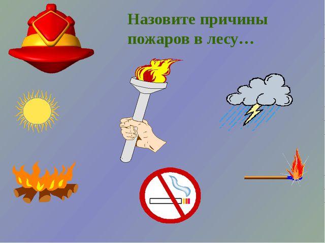 Назовите причины пожаров в лесу…