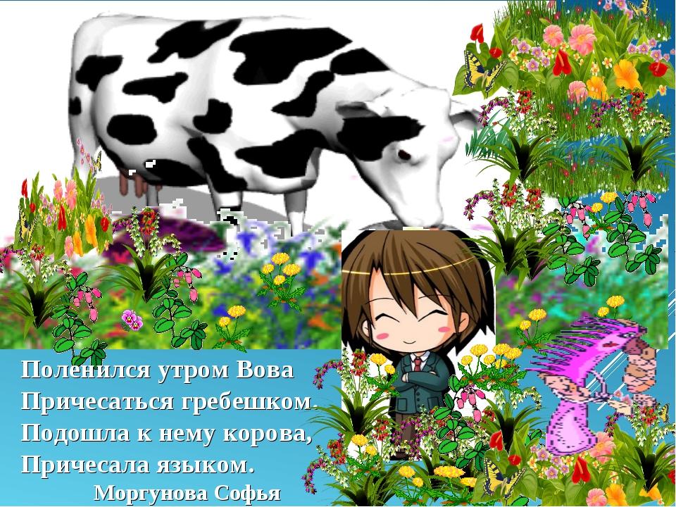 Поленился утром Вова Причесаться гребешком. Подошла к нему корова, Причесала...