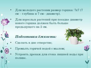 Для молодого растения размер горшка: 7х7 (7 см – глубина и 7 см - диаметр). Д