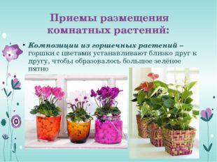 Приемы размещения комнатных растений: Композиции из горшечных растений – горш