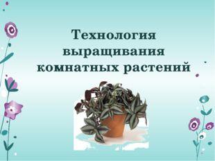 Технология выращивания комнатных растений