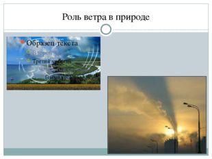 Роль ветра в природе