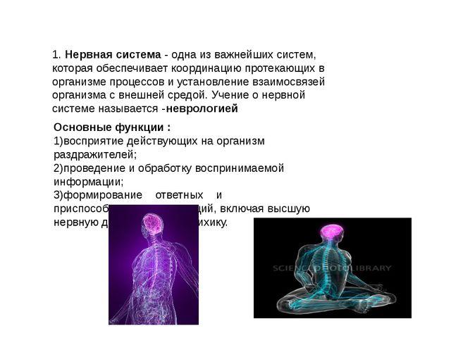 1. Нервная система - одна из важнейших систем, которая обеспечивает координац...